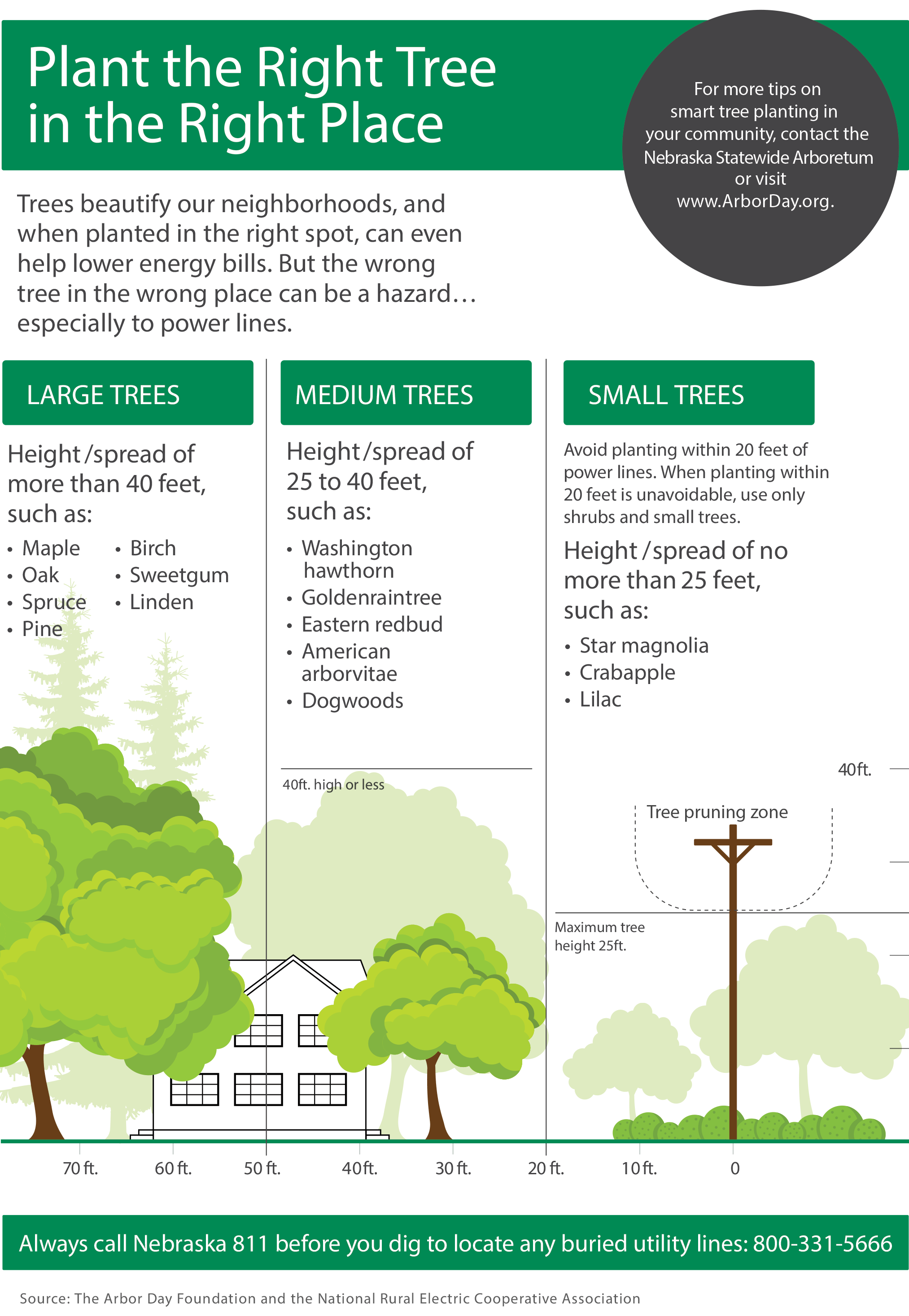 NRECA and Arbor Day Foundation graphic that shows safe tree planting distances from power lines
