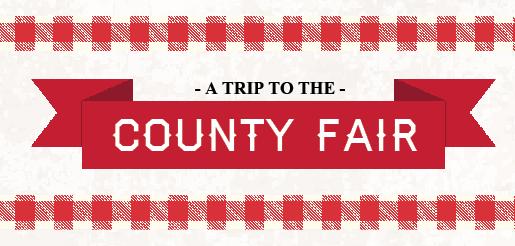 Dawson PPD 2016 financial report: a trip to the county fair
