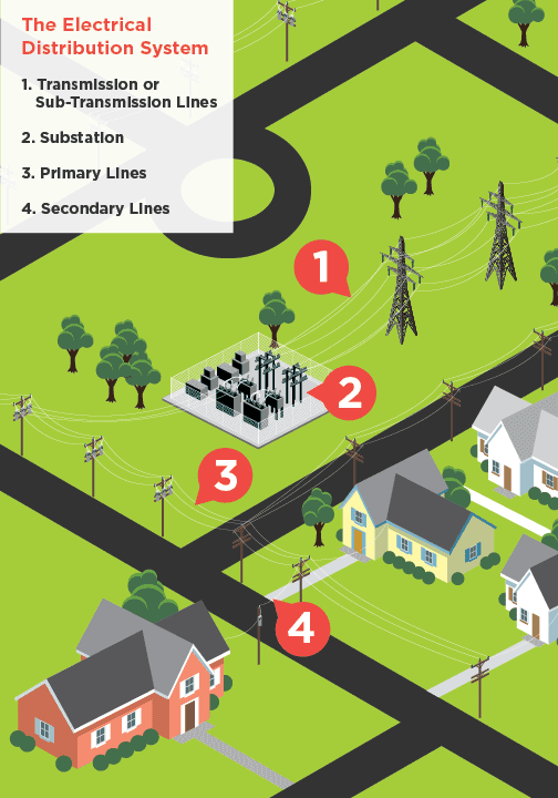 The electrical distribution system can be broken down into four main power lines: transmission, sub-transmission, primary and secondary.