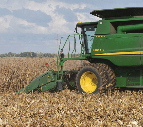 A combine harvests a corn field.